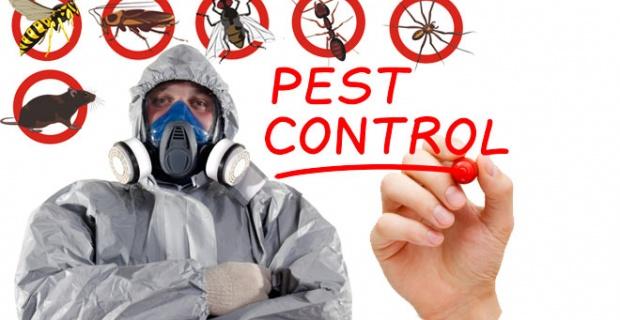 Fox Pest Control Haşere İlaçlama
