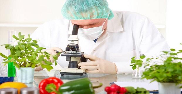 Londra'da Çalışacak Gıda Mühendisi