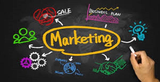 Morjinal Marketing and Consultancy Creative Design