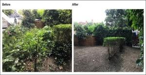 Londra#039;da Tüm Bahçe İşleriniz...