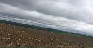 Tekirdağ'da Satılık Çiftlik Arazisi