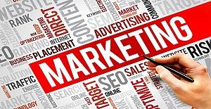 Idea Bucket ile Business Consultancy and Marketing