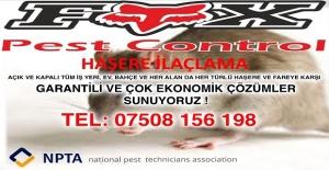 Londra'da Ev,İşyeri,Ofis ve Her Türlü Mekanınızın Pest Control işi yapılır.