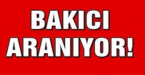 BAKICI ARANIYOR